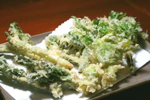 「山菜の天ぷら」始まりました!