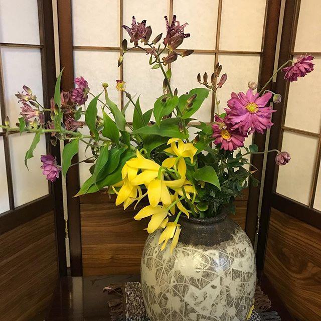 「ほととぎす」八重の秋明菊、シンピジューム、生けてみました。